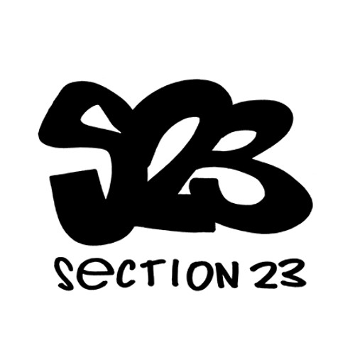 Section 23's avatar