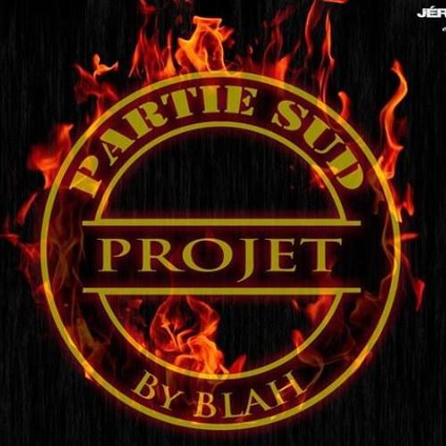 Partie Sud Projet France's avatar