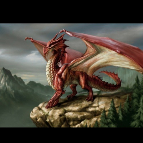 SoundDragon's avatar