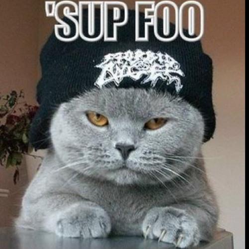 The Gangsta Cat's avatar