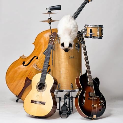 TheTroubadours's avatar