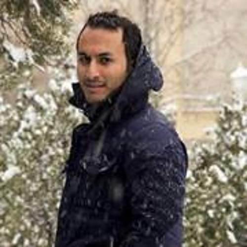 Milad Hatami 1's avatar