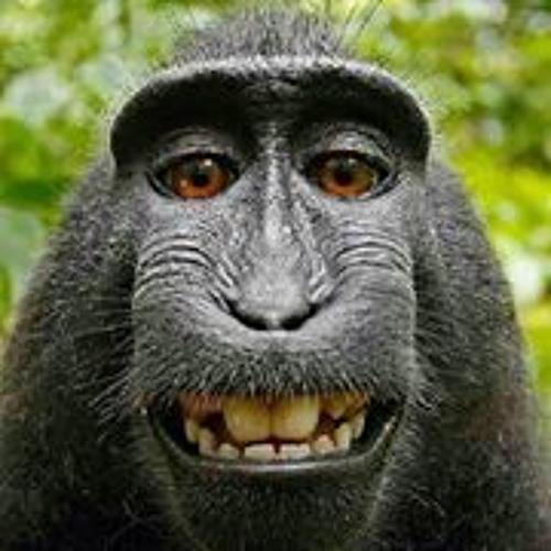 Anika McKay's avatar