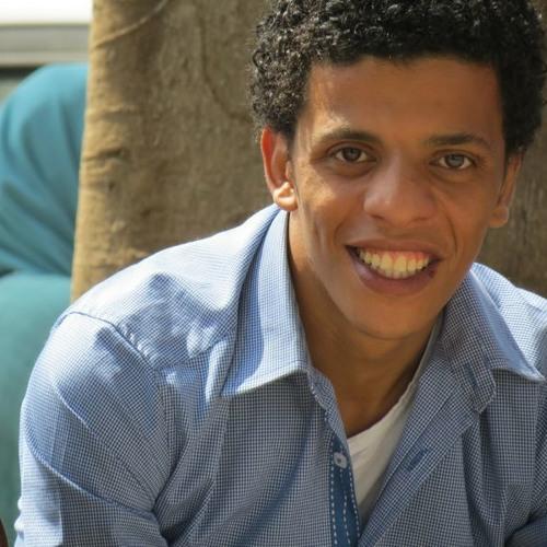 Ahmed M. Abd El-Hamed's avatar