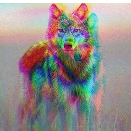 rioaurelio_'s avatar