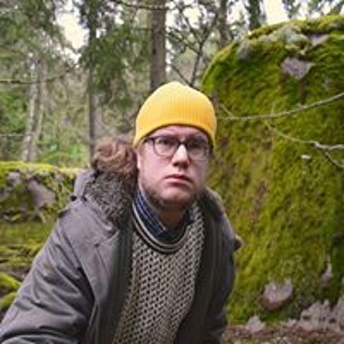 Johan Lejmark's avatar
