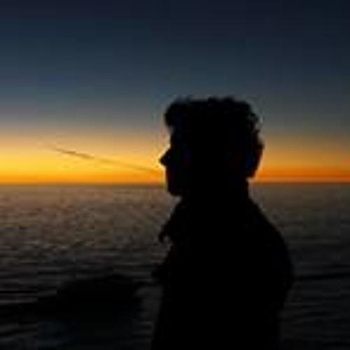 Alessandro Ferrario 1's avatar