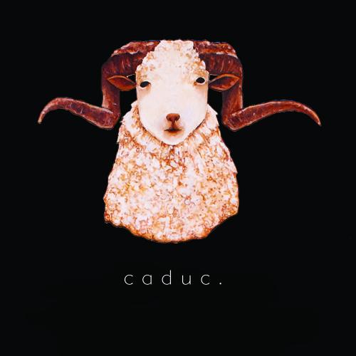 caduc.'s avatar