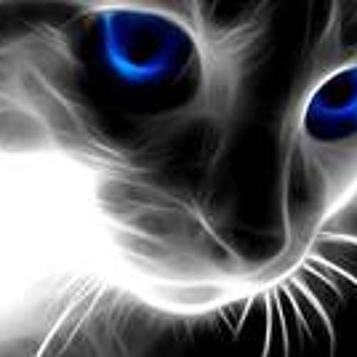 Momen El-Sayed's avatar