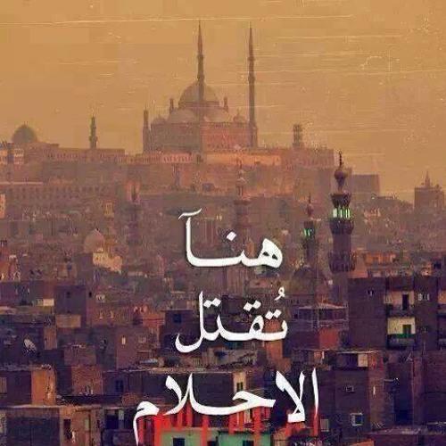 Maya Mounir's avatar