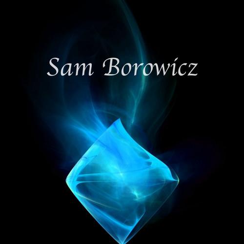Sam Borowicz's avatar