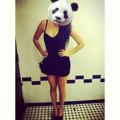 Jemma Purdon's avatar