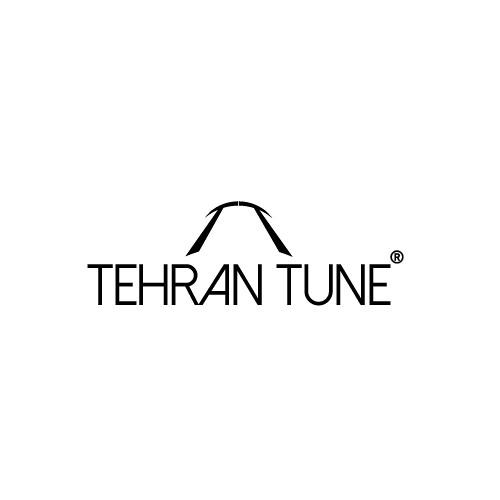 Tehran Tune™'s avatar
