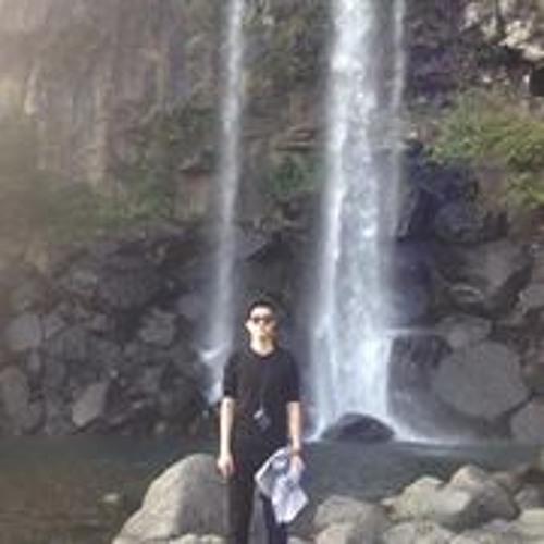 Luispooh's avatar