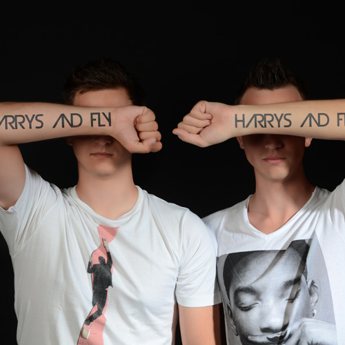 Harrys & Fly's avatar