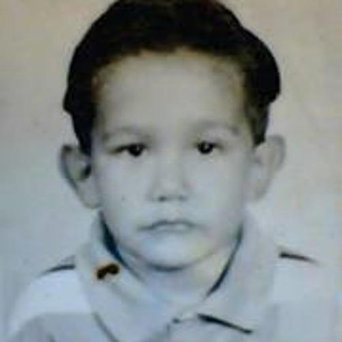 Michel Lara Vega's avatar