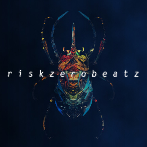 Risk Zero Beatz's avatar