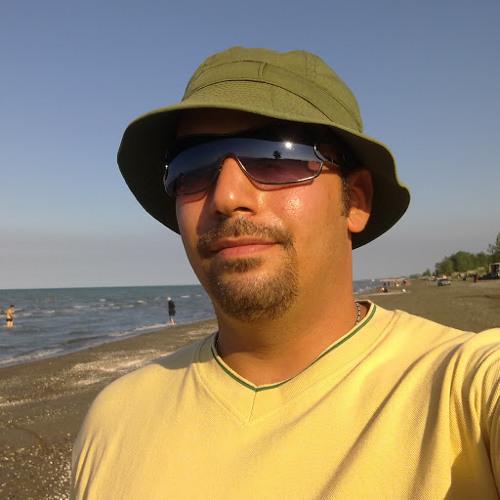 Hamed Hassani 1's avatar
