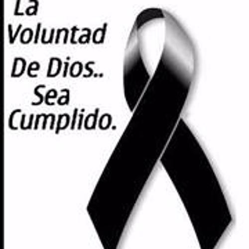 Carlos Navarro 90's avatar