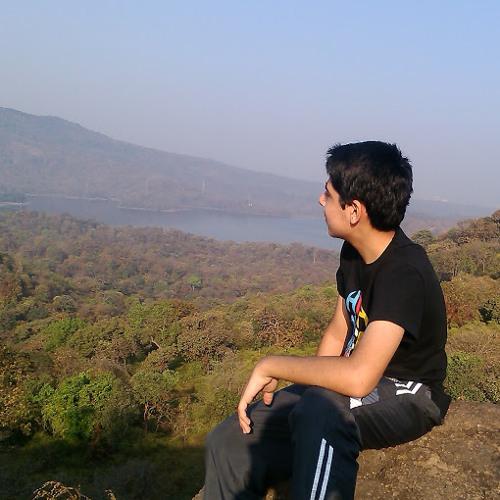 ritik dhame's avatar