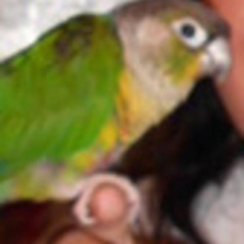 Martha Hopkins 1's avatar