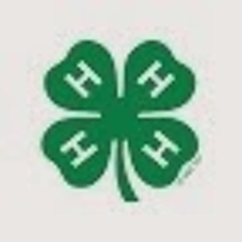 user197126191's avatar