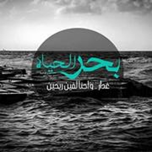 Elsayed Hamdy 2's avatar