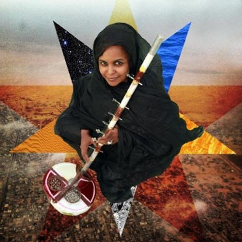 Noura Mint Seymali's avatar