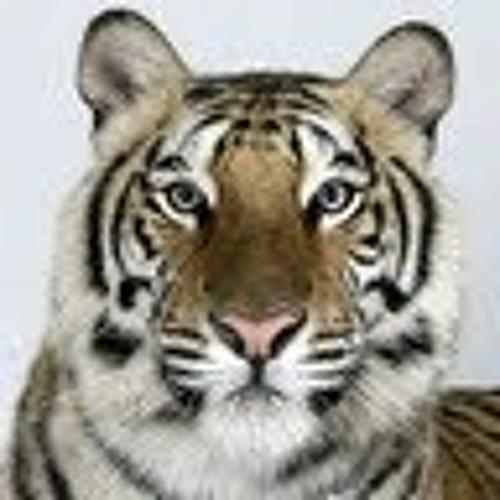 ahmedmoamen's avatar
