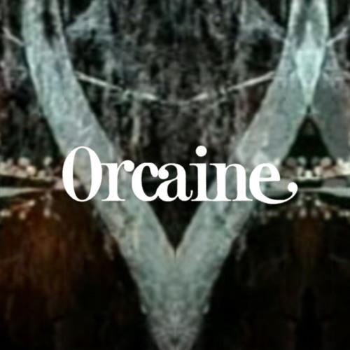 Orcaine's avatar