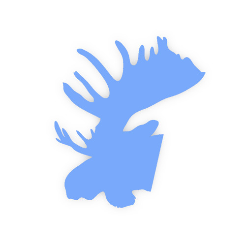 Song Moose's avatar