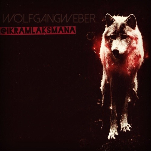 WolfgangWeber's avatar