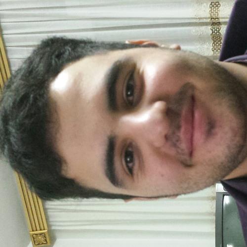 elham13's avatar