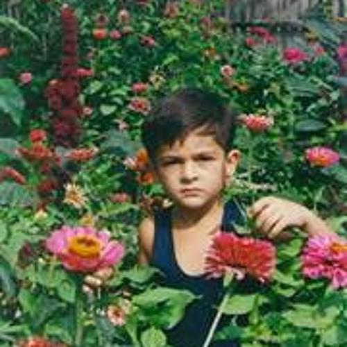 Levan Patsinashvili's avatar
