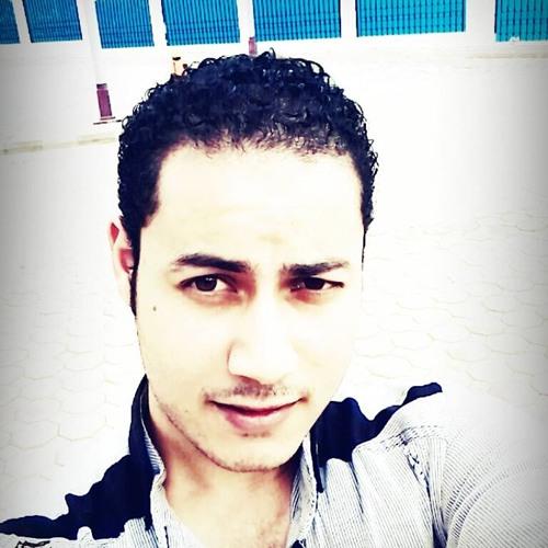 Ibrahim Mostafa Mohamed 1's avatar