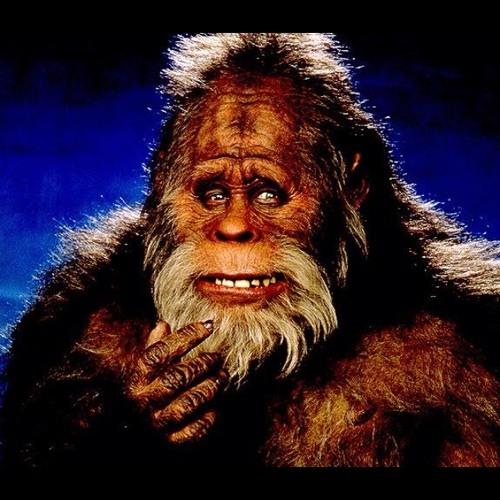 mackerzz's avatar