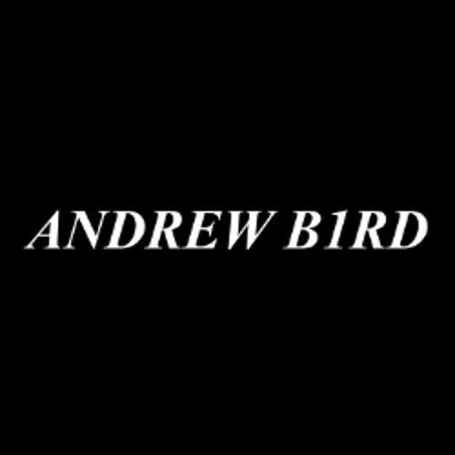 DJ Andrew B1rd's avatar