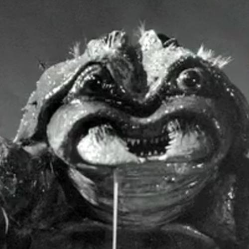 MTN SPRT's avatar