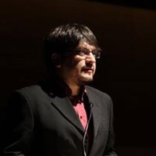 Javier Ibacache V's avatar