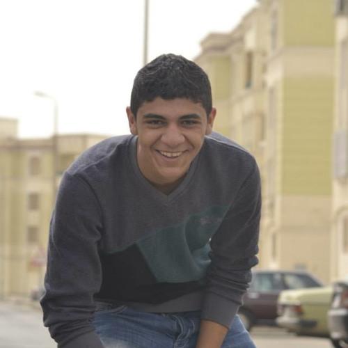 Mohamed TaȜlab's avatar