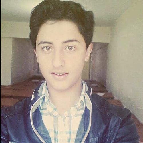 Muhammed Talha Toker's avatar