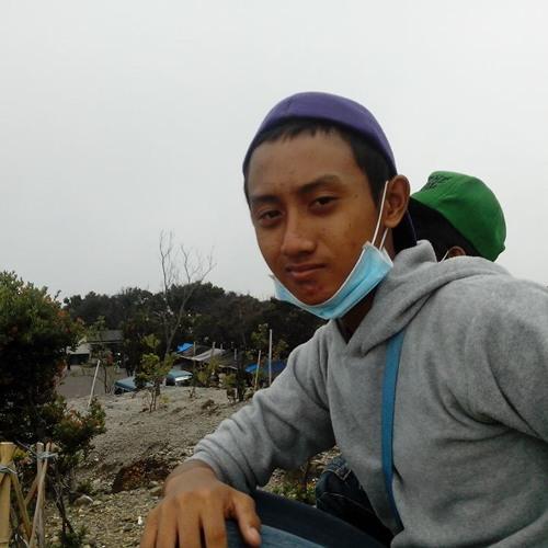 andhantrisnap's avatar