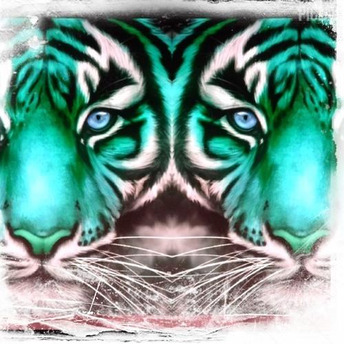 shannonsayers's avatar