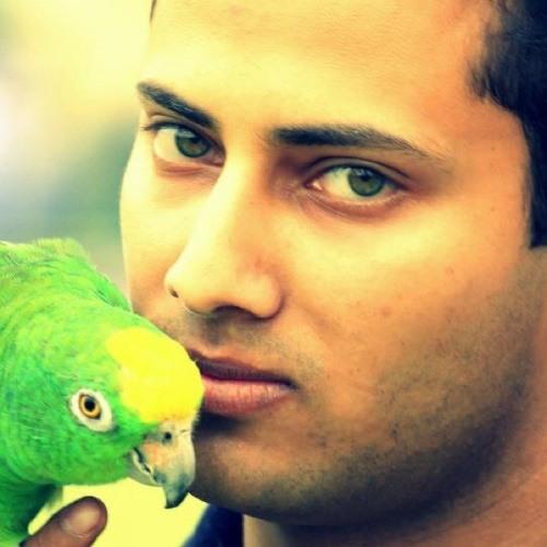 Waqas Malik 17's avatar
