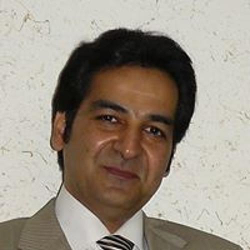 Farshid Barzin's avatar