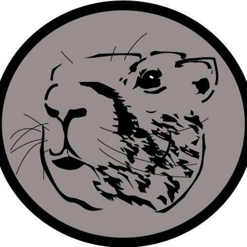 Marmot a.k.a. 3R's avatar