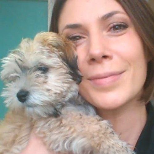 Jana Zajc's avatar
