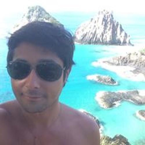 Diego Andalik's avatar