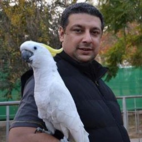 Babur Salahuddin's avatar