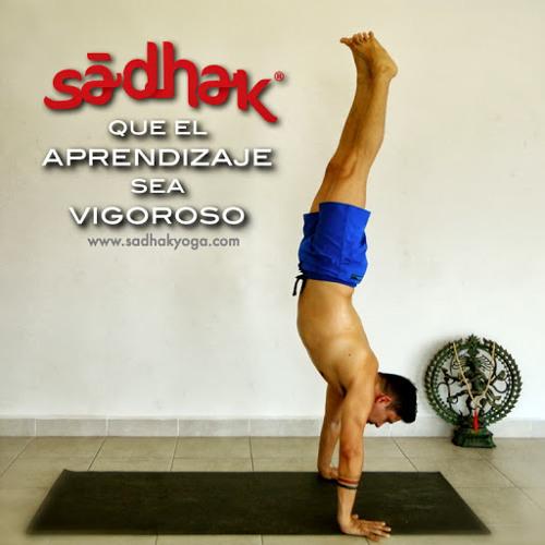 Sadhak Yoga's avatar